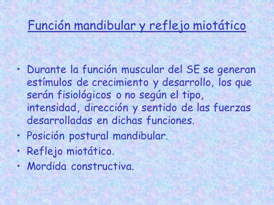 Función mandibular y reflejo miotático