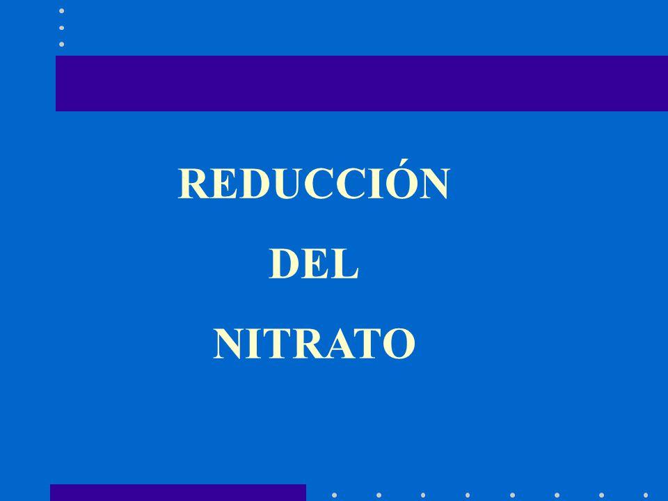 REDUCCIÓN DEL NITRATO