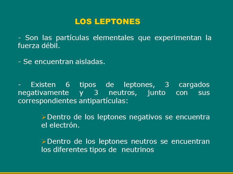 LOS LEPTONES - Son las partículas elementales que experimentan la fuerza débil. - Se encuentran aisladas.