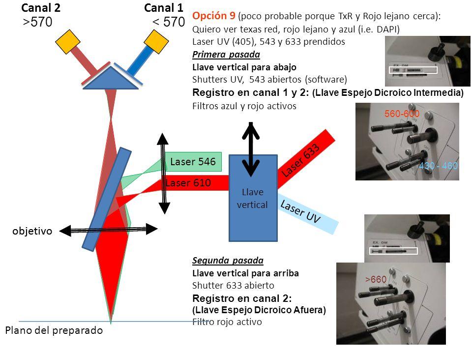 Canal 2 Canal 1. Opción 9 (poco probable porque TxR y Rojo lejano cerca): Quiero ver texas red, rojo lejano y azul (i.e. DAPI)