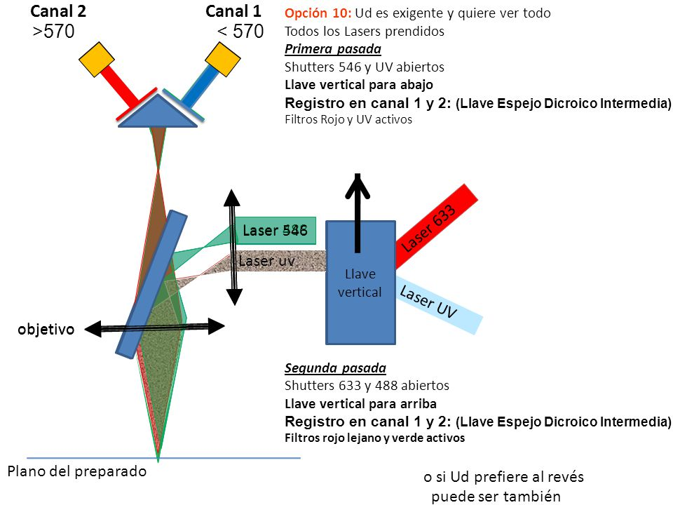 Canal 2 Canal 1 >570 < 570 Laser 633 Laser 488 Laser 546