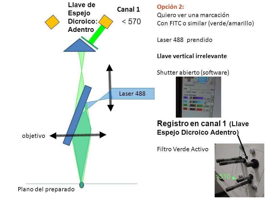 Registro en canal 1 (Llave Espejo Dicroico Adentro) Canal 1