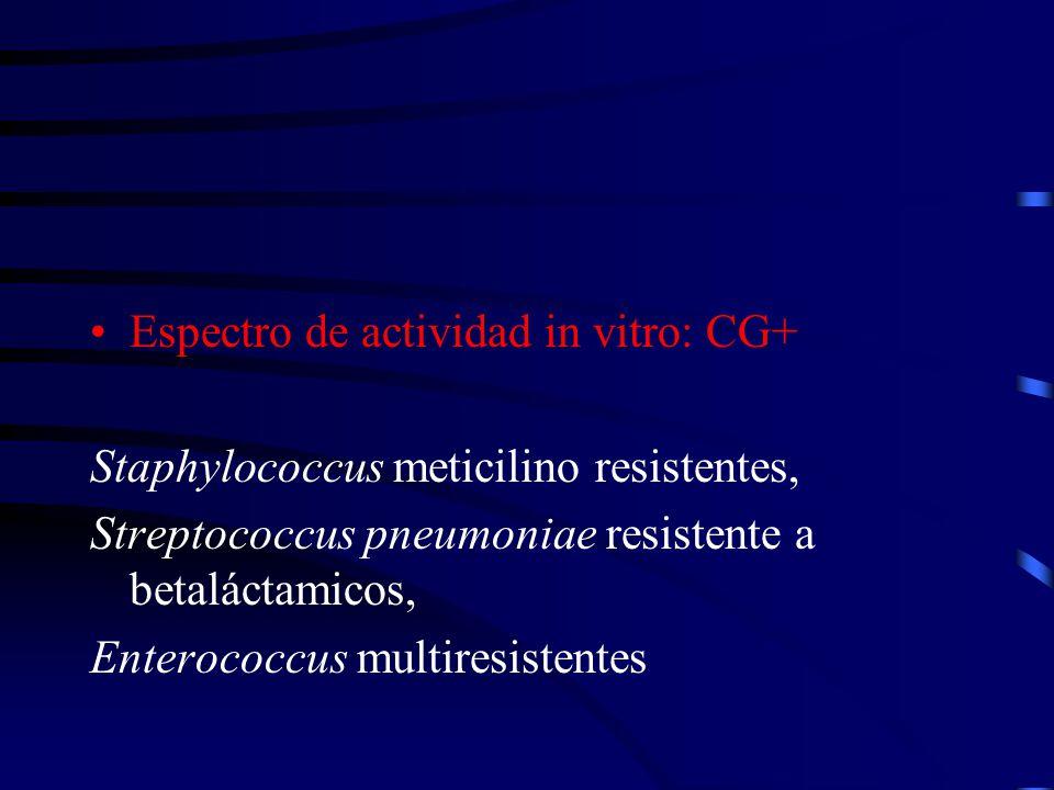 Espectro de actividad in vitro: CG+