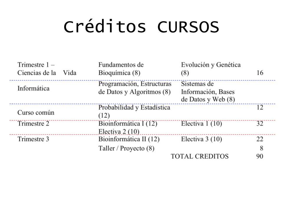 Créditos CURSOS