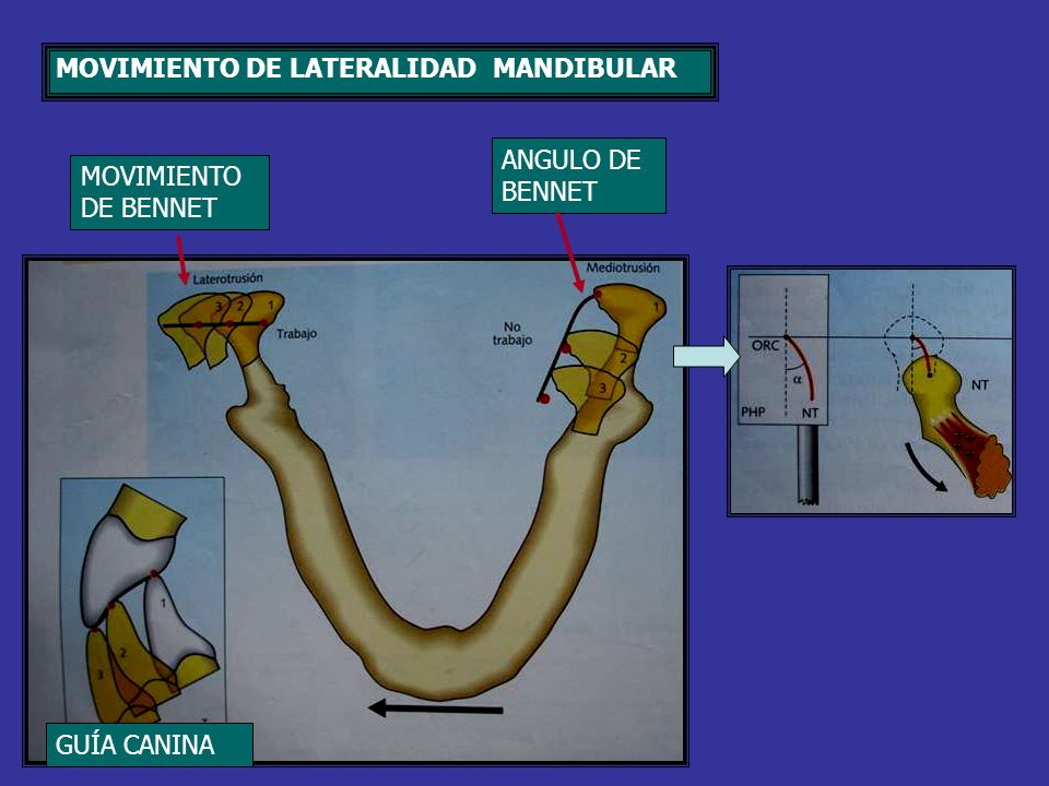 MOVIMIENTO DE LATERALIDAD MANDIBULAR