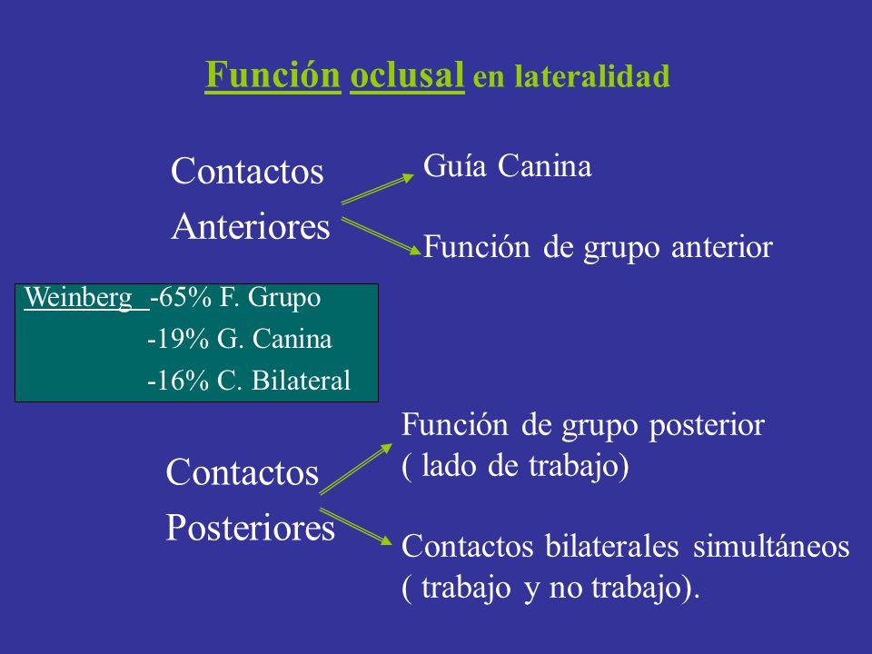 Función oclusal en lateralidad