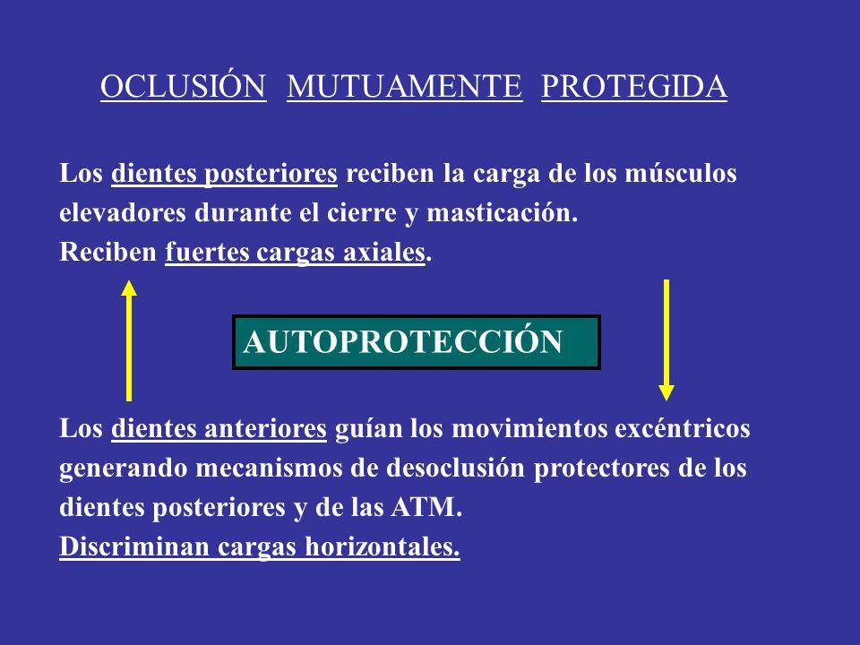 OCLUSIÓN MUTUAMENTE PROTEGIDA