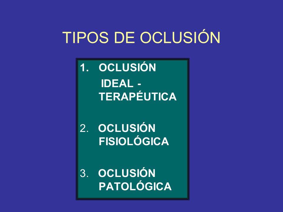 TIPOS DE OCLUSIÓN OCLUSIÓN IDEAL - TERAPÉUTICA 2. OCLUSIÓN FISIOLÓGICA