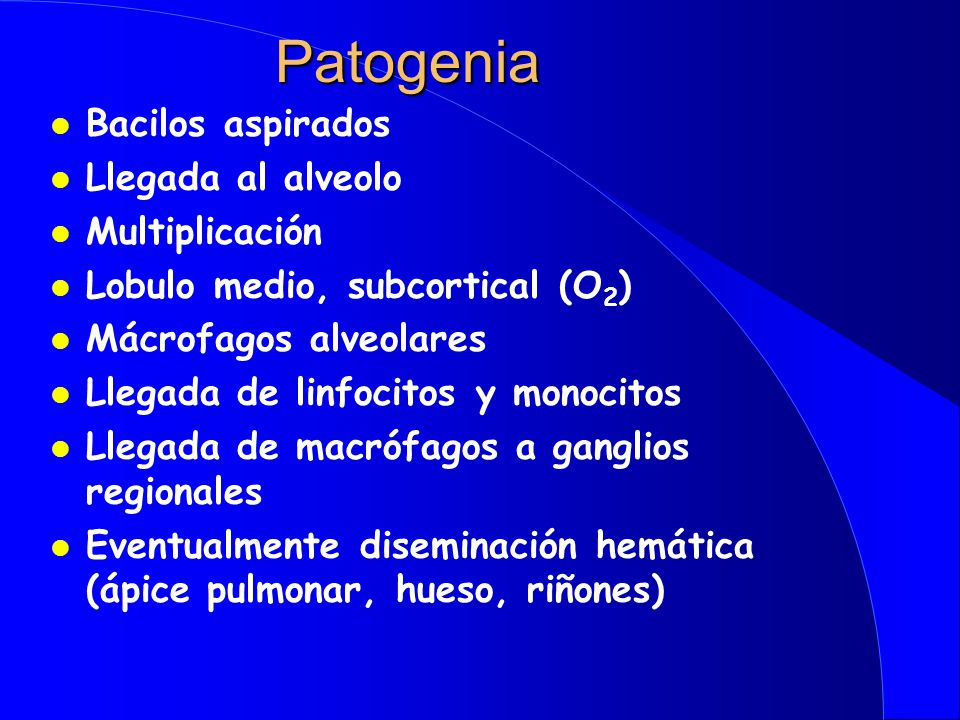 Patogenia Bacilos aspirados Llegada al alveolo Multiplicación