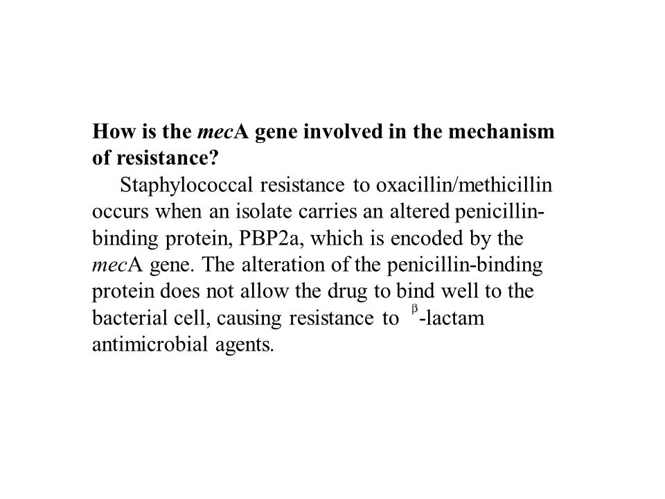 How is the mecA gene involved in the mechanism of resistance