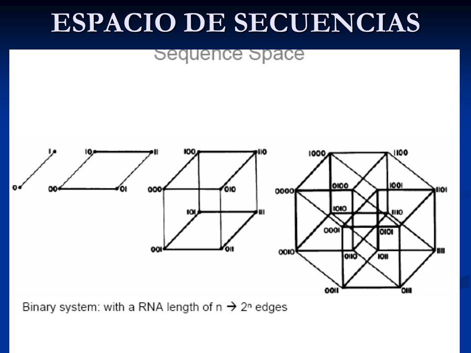 ESPACIO DE SECUENCIAS Genoma = secuencia de un alfabeto de 4 letras: A, T, C y G.