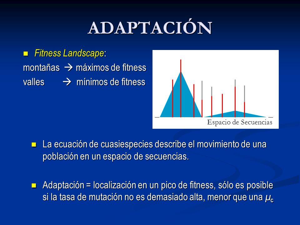 ADAPTACIÓN Fitness Landscape: montañas  máximos de fitness