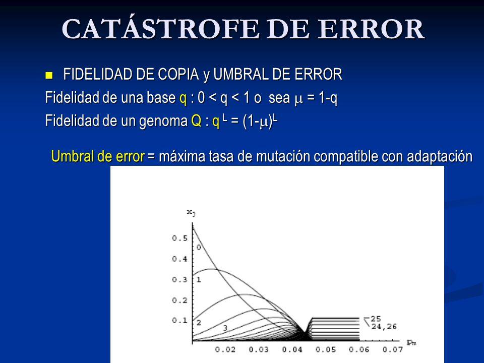 CATÁSTROFE DE ERROR µ < µc  1/L µ > µc  1/L