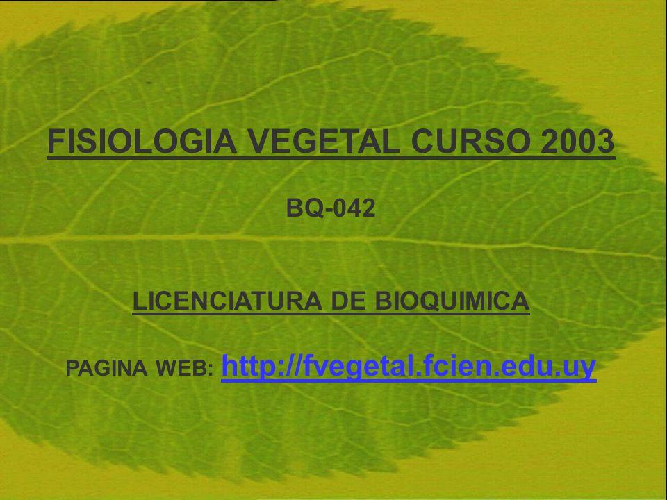 FISIOLOGIA VEGETAL CURSO 2003