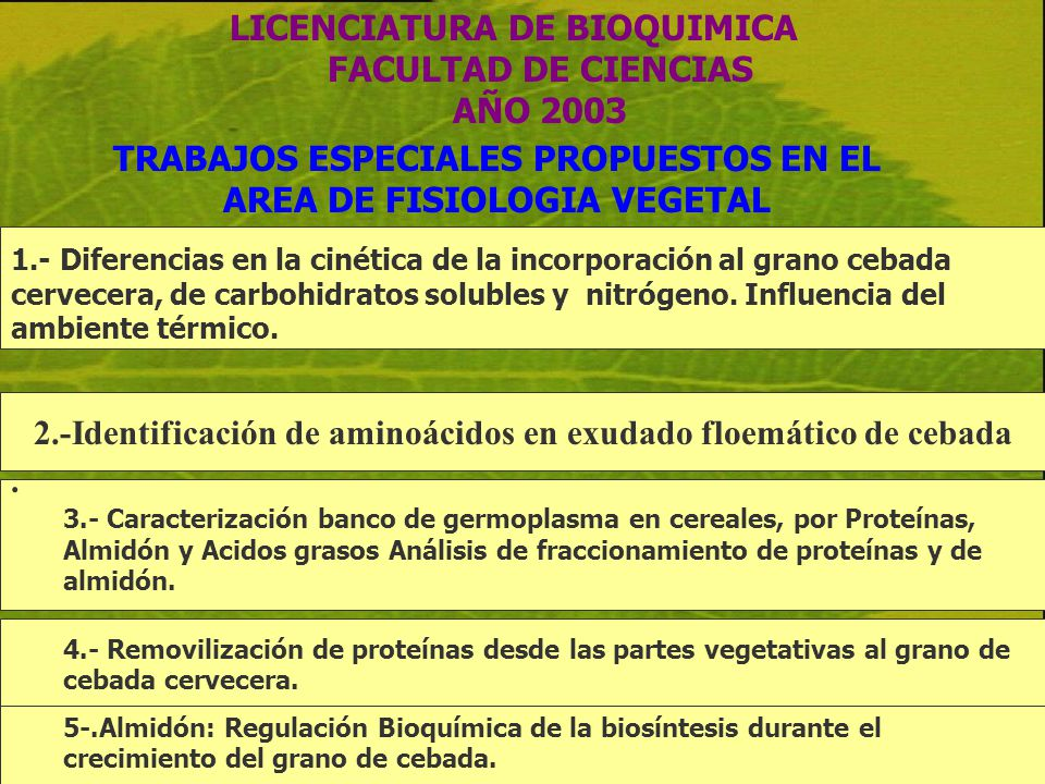 LICENCIATURA DE BIOQUIMICA FACULTAD DE CIENCIAS AÑO 2003