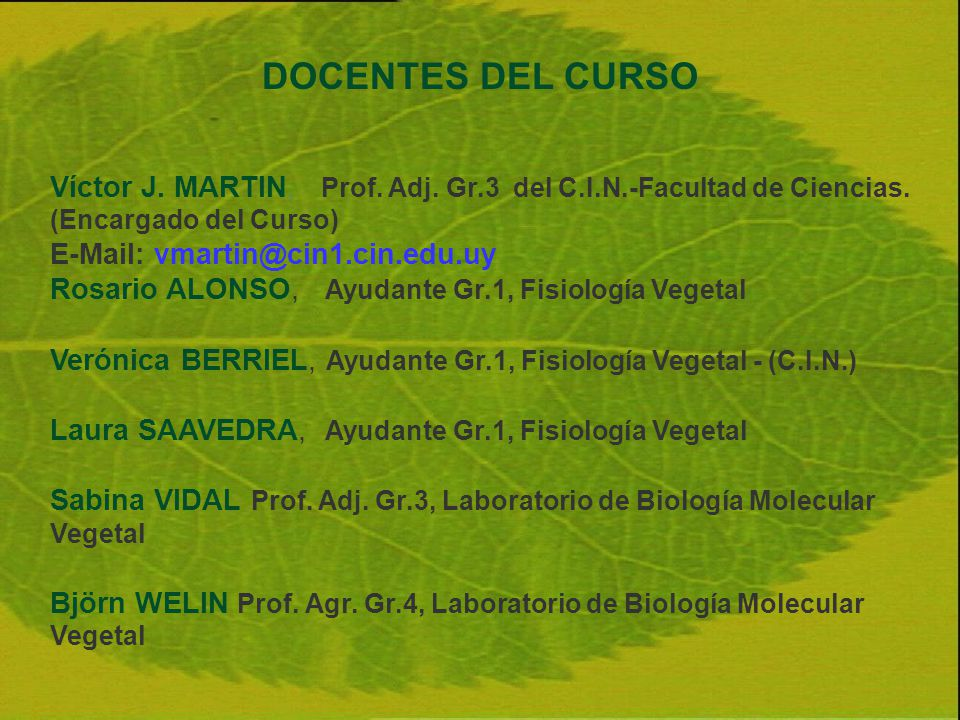 DOCENTES DEL CURSO Víctor J. MARTIN, Prof. Adj. Gr.3 del C.I.N.-Facultad de Ciencias. (Encargado del Curso)