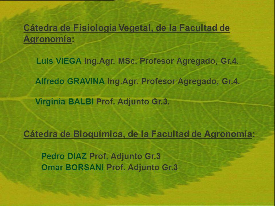 Cátedra de Fisiología Vegetal, de la Facultad de Agronomía: