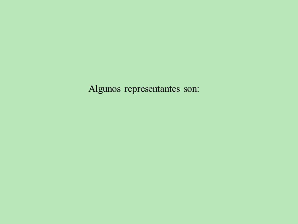Algunos representantes son: