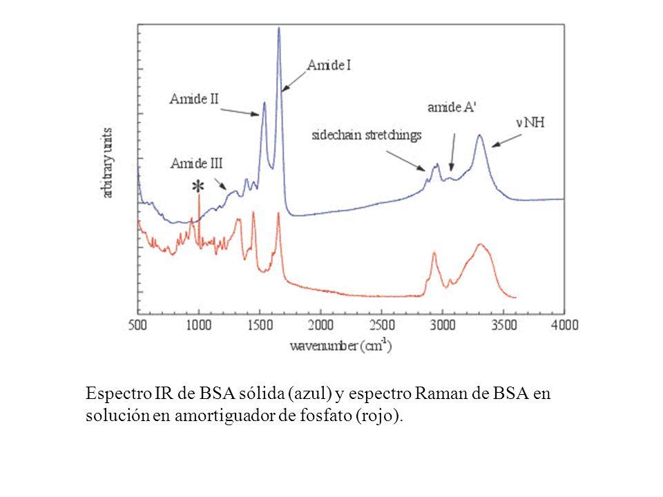 Espectro IR de BSA sólida (azul) y espectro Raman de BSA en solución en amortiguador de fosfato (rojo).