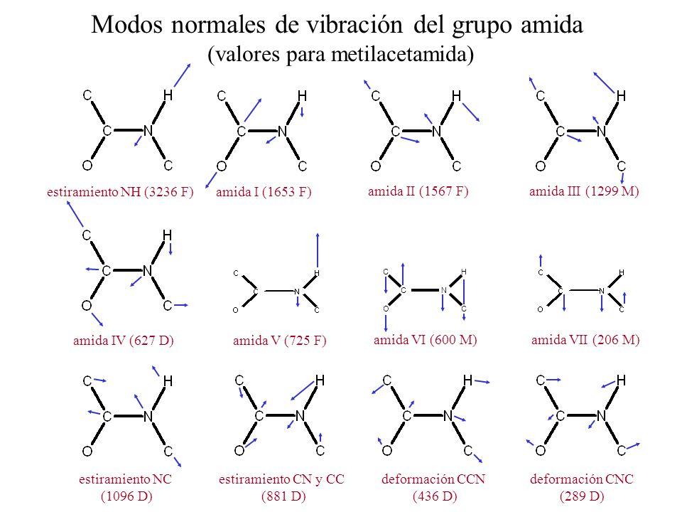 Modos normales de vibración del grupo amida