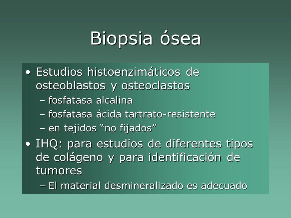 Biopsia ósea Estudios histoenzimáticos de osteoblastos y osteoclastos