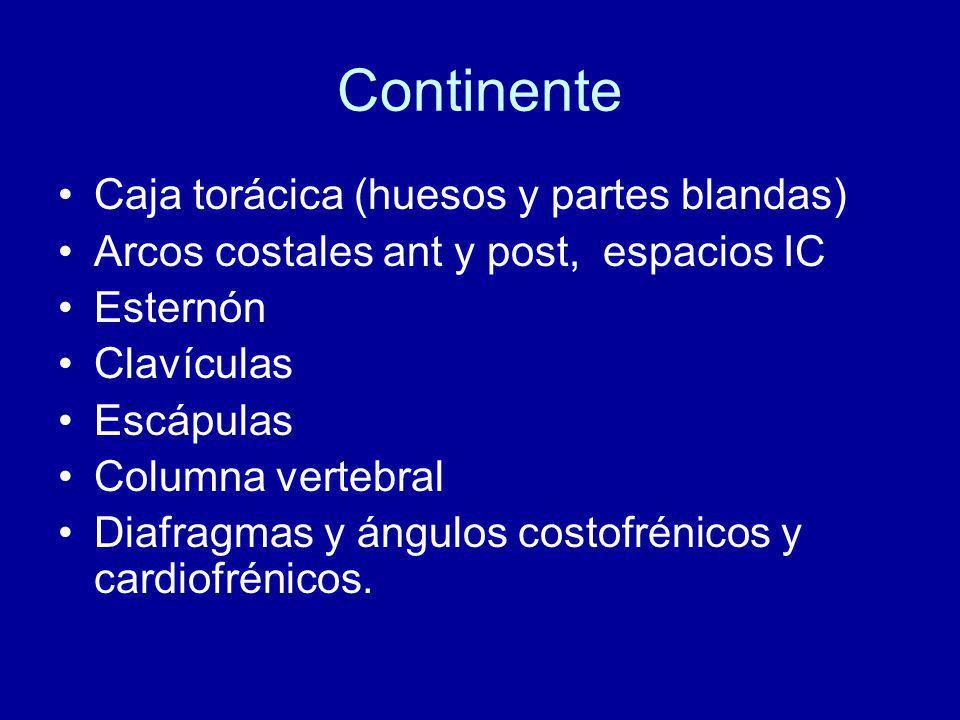 Continente Caja torácica (huesos y partes blandas)