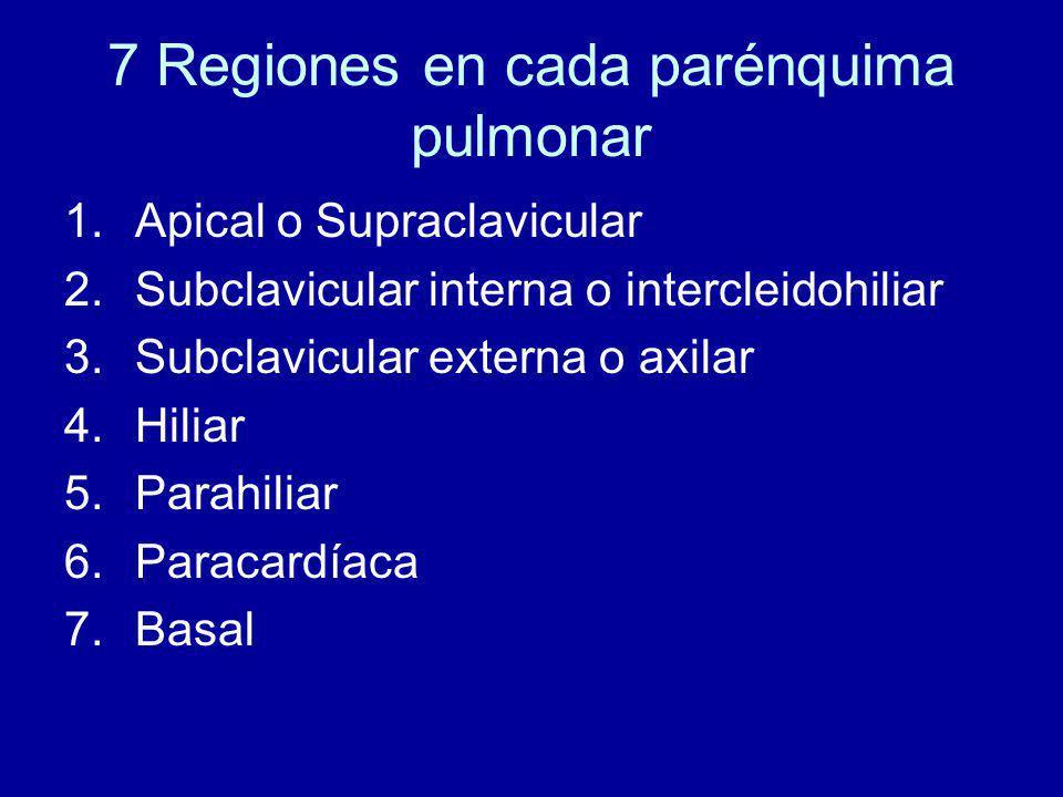 7 Regiones en cada parénquima pulmonar