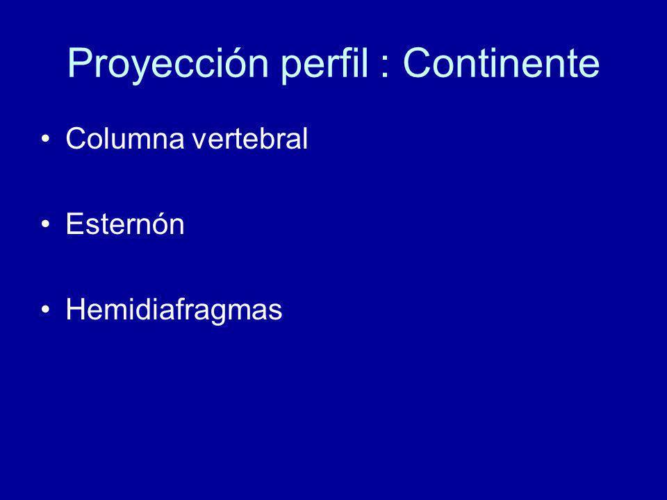 Proyección perfil : Continente