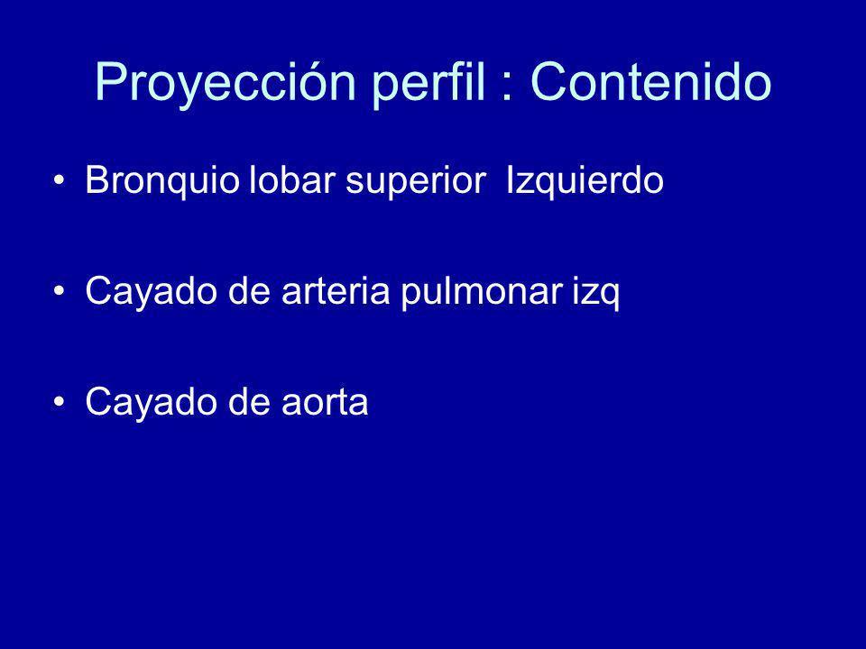 Proyección perfil : Contenido