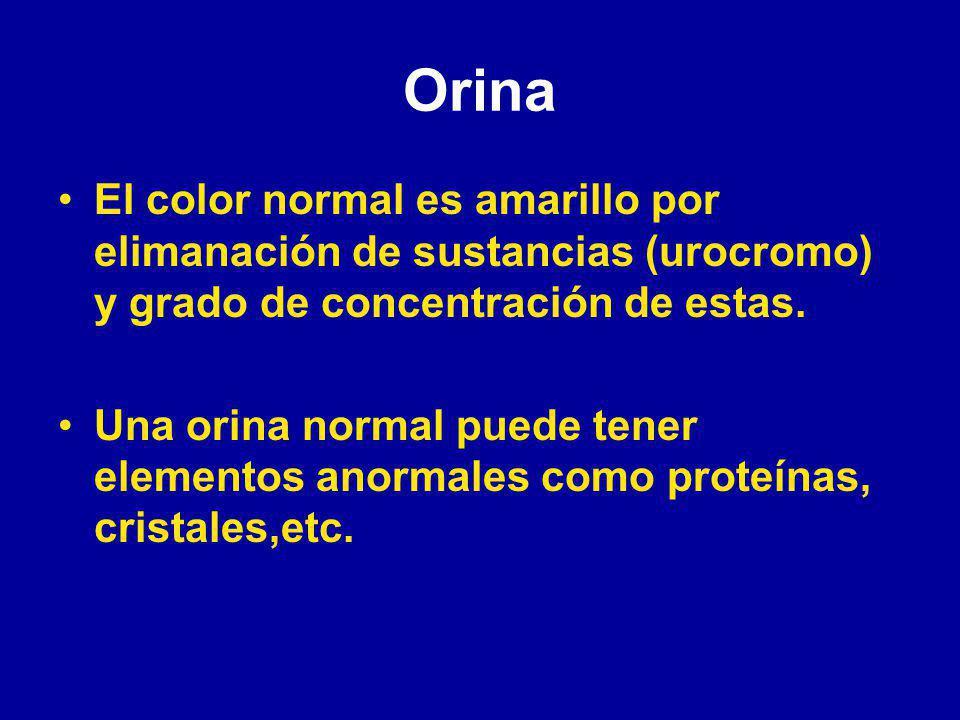 Orina El color normal es amarillo por elimanación de sustancias (urocromo) y grado de concentración de estas.