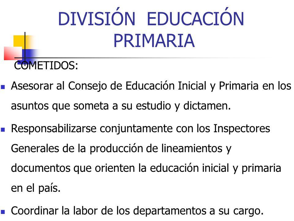 DIVISIÓN EDUCACIÓN PRIMARIA