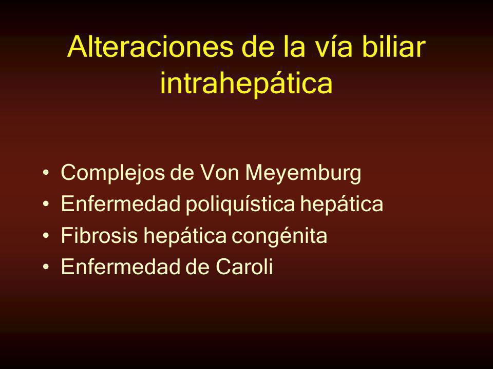 Alteraciones de la vía biliar intrahepática