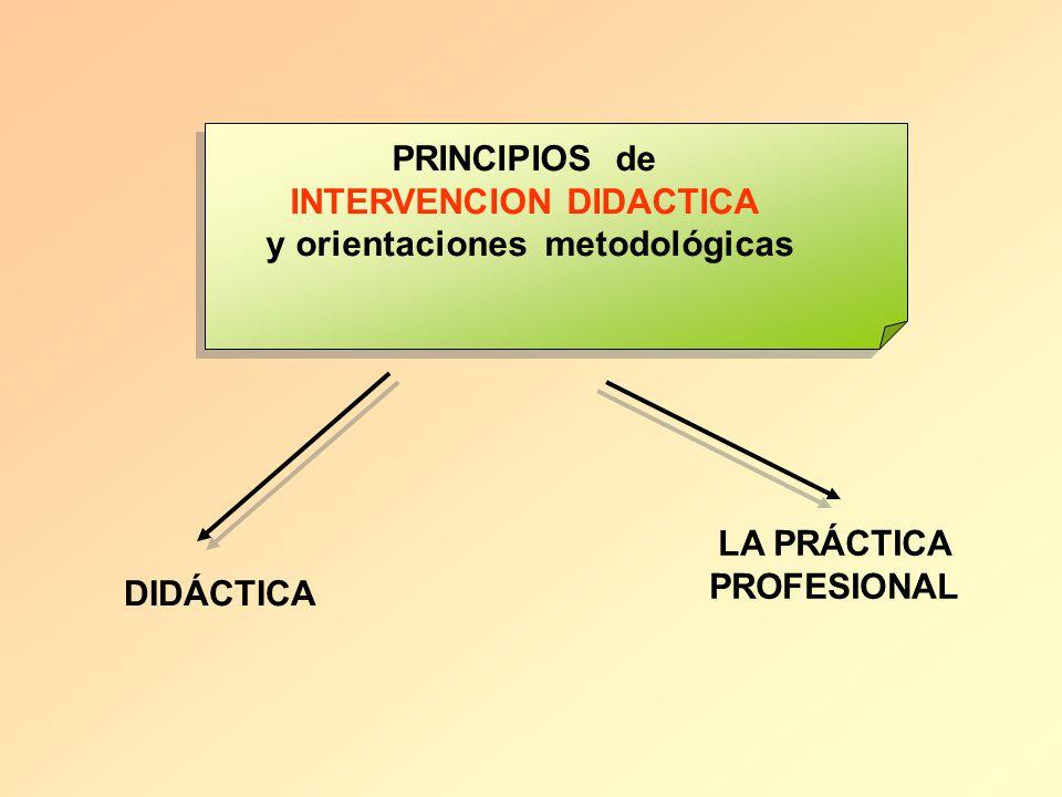 INTERVENCION DIDACTICA y orientaciones metodológicas