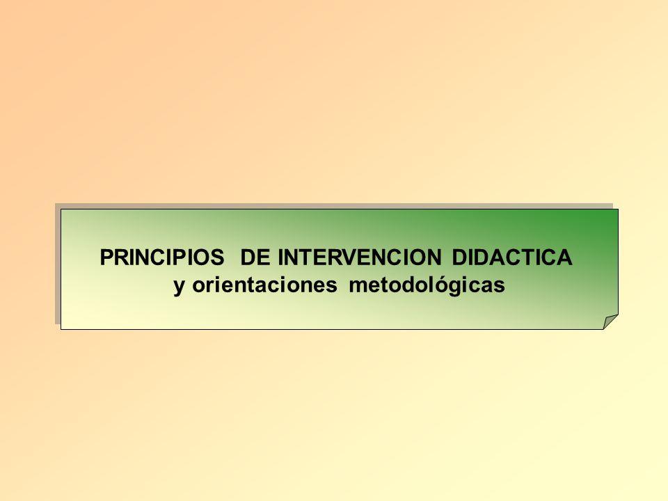 PRINCIPIOS DE INTERVENCION DIDACTICA y orientaciones metodológicas