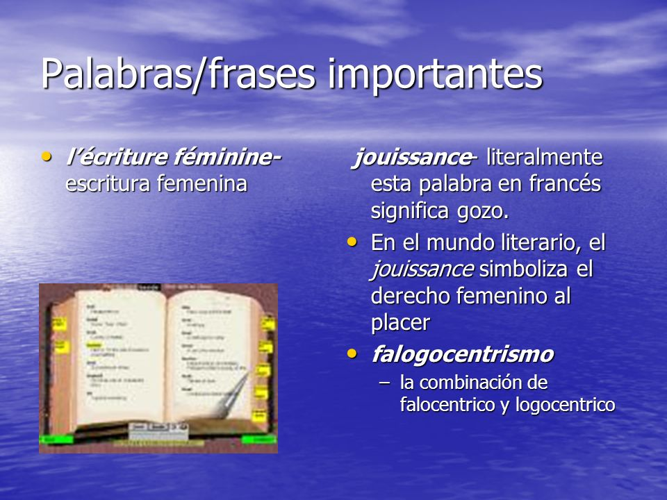 Palabras/frases importantes