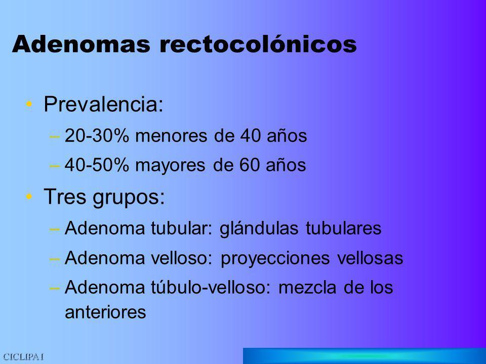 Adenomas rectocolónicos