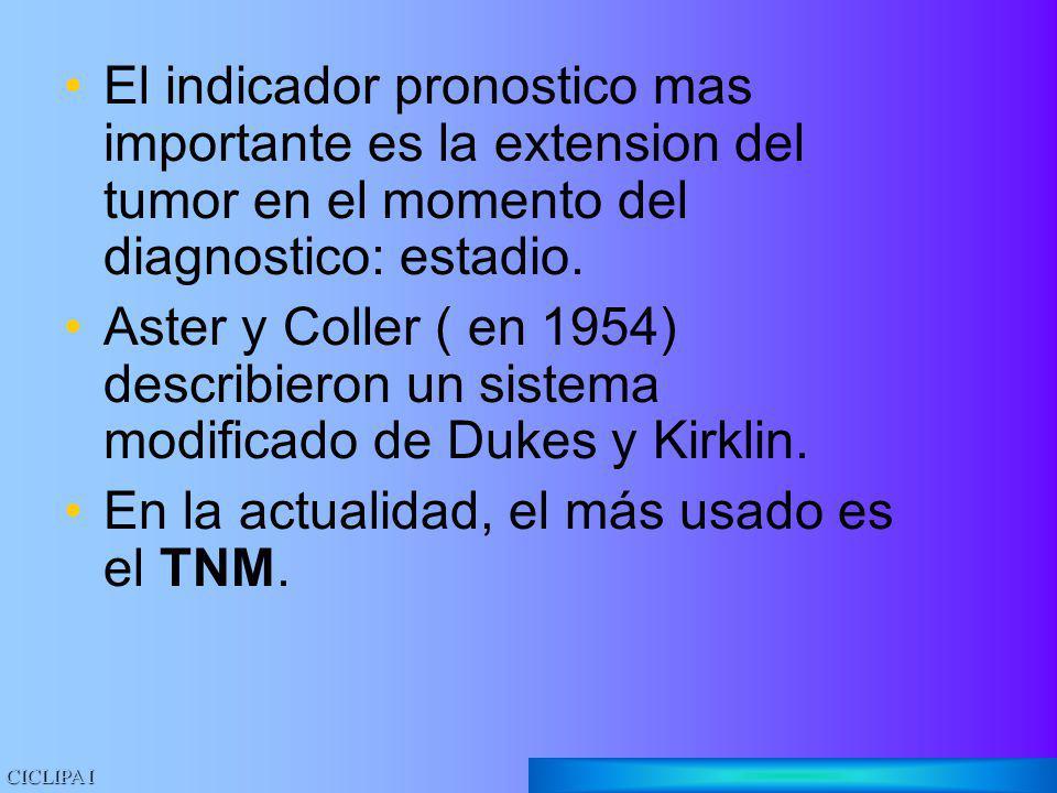 En la actualidad, el más usado es el TNM.