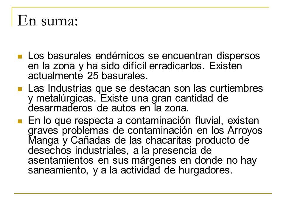 En suma: Los basurales endémicos se encuentran dispersos en la zona y ha sido difícil erradicarlos. Existen actualmente 25 basurales.