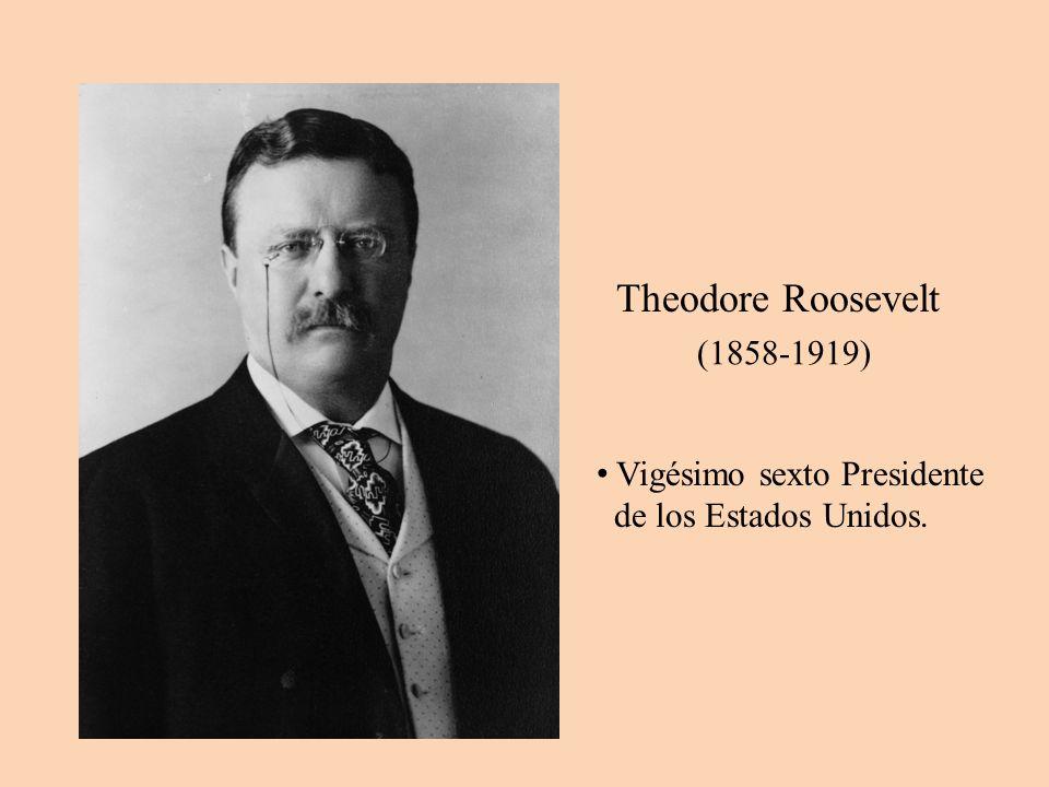 Theodore Roosevelt Vigésimo sexto Presidente de los Estados Unidos.