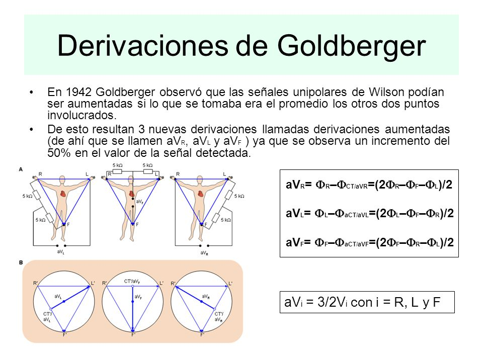 Derivaciones de Goldberger