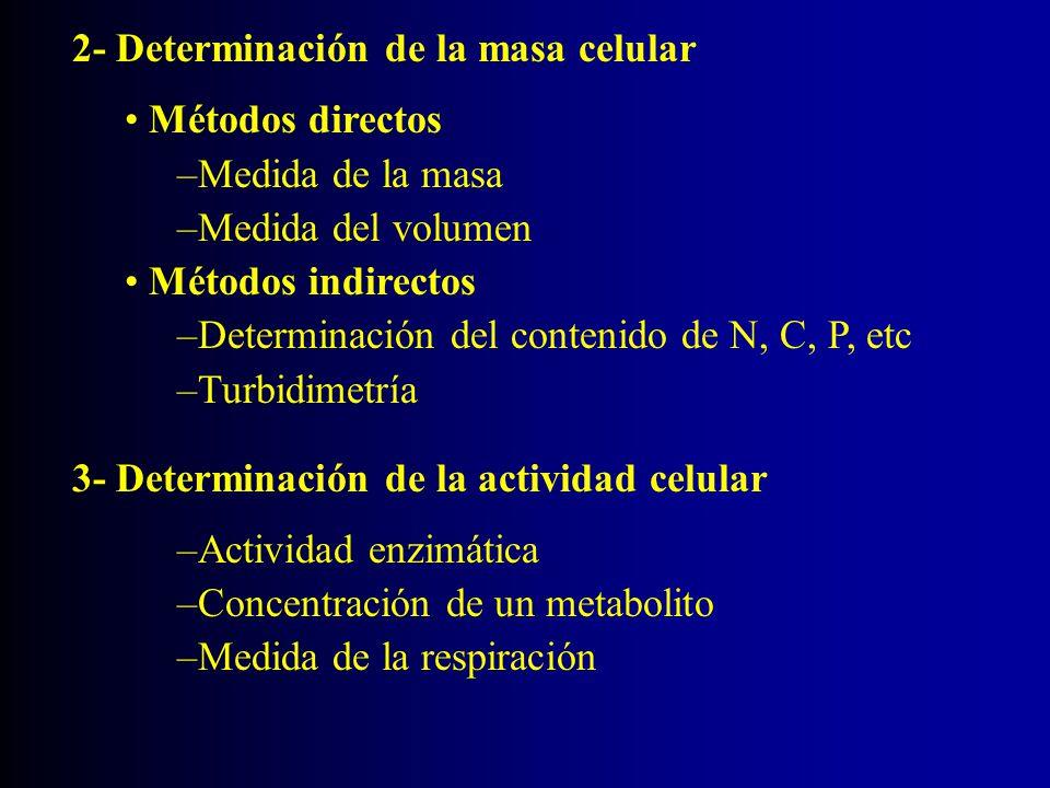 2- Determinación de la masa celular