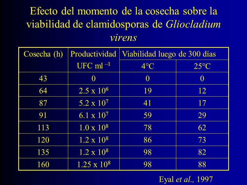 Efecto del momento de la cosecha sobre la viabilidad de clamidosporas de Gliocladium virens