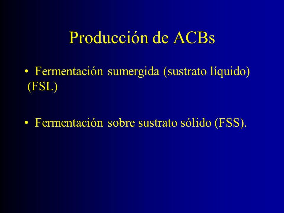 Producción de ACBs Fermentación sumergida (sustrato líquido) (FSL)