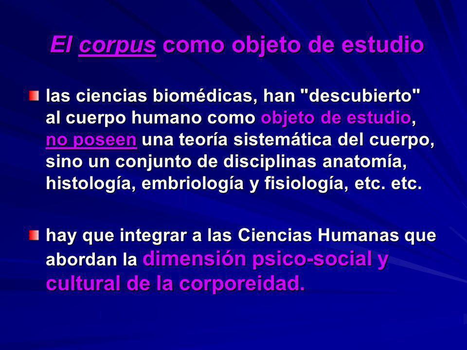 El corpus como objeto de estudio