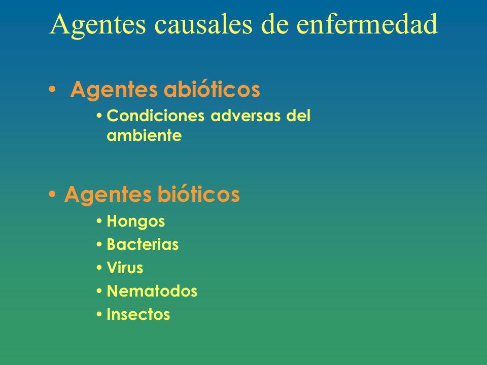 Agentes causales de enfermedad