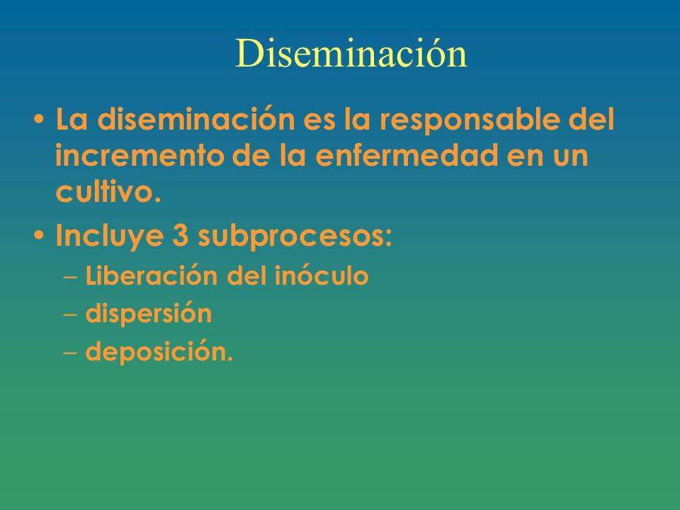 Diseminación La diseminación es la responsable del incremento de la enfermedad en un cultivo. Incluye 3 subprocesos: