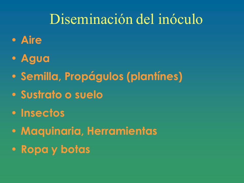 Diseminación del inóculo