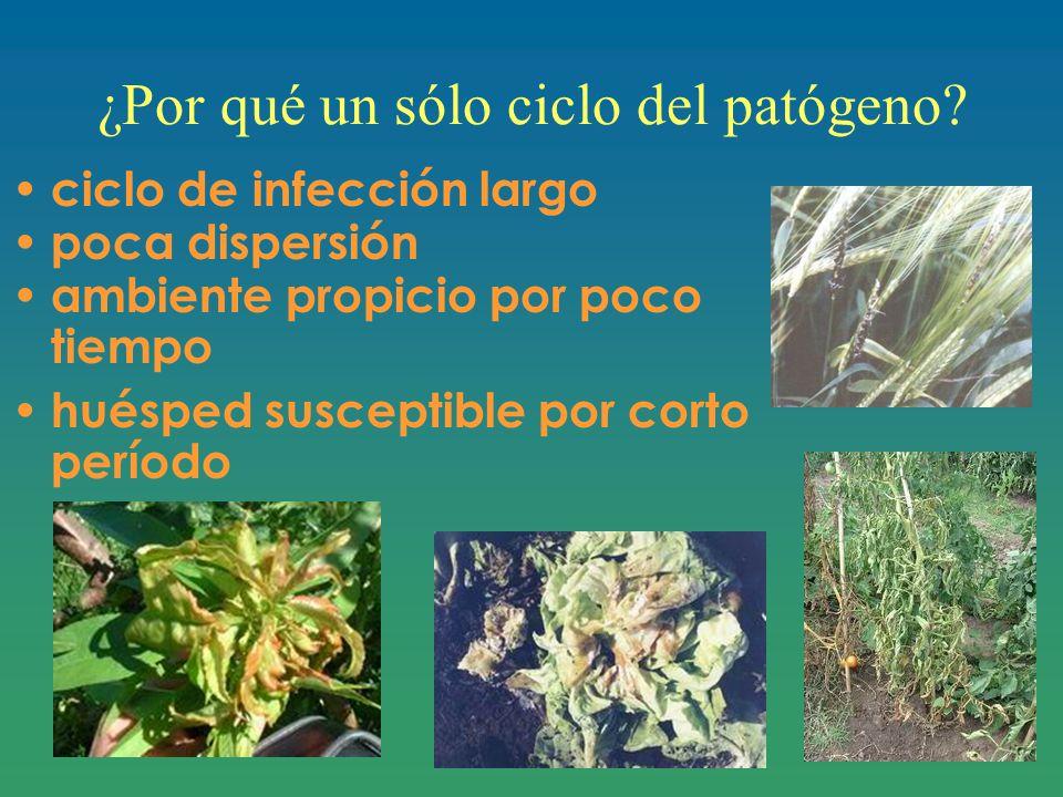 ¿Por qué un sólo ciclo del patógeno