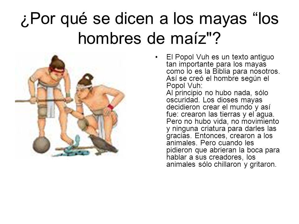 ¿Por qué se dicen a los mayas los hombres de maíz