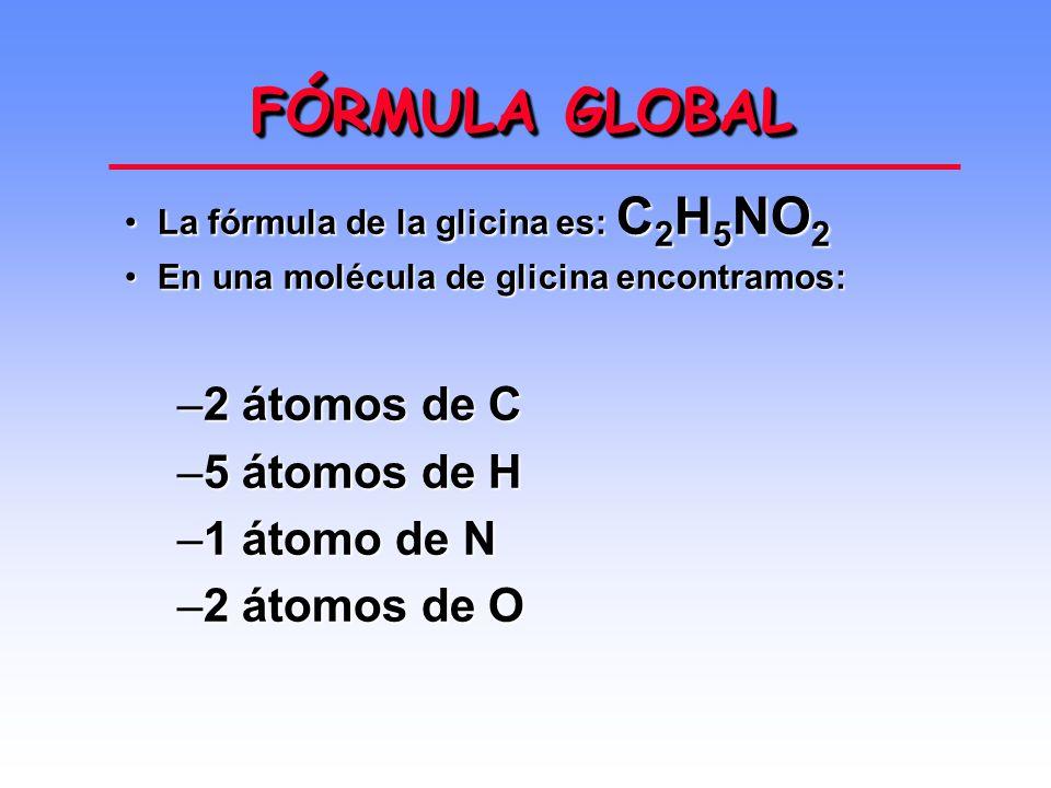 FÓRMULA GLOBAL 2 átomos de C 5 átomos de H 1 átomo de N 2 átomos de O